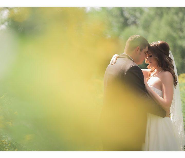 NH Wedding Photographer / Millyard Studios / Bishop Farm / Katie & Brandon