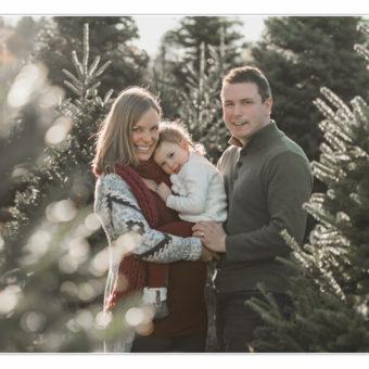 NH Photographer / Millyard Studios / Tree Farm Sessions