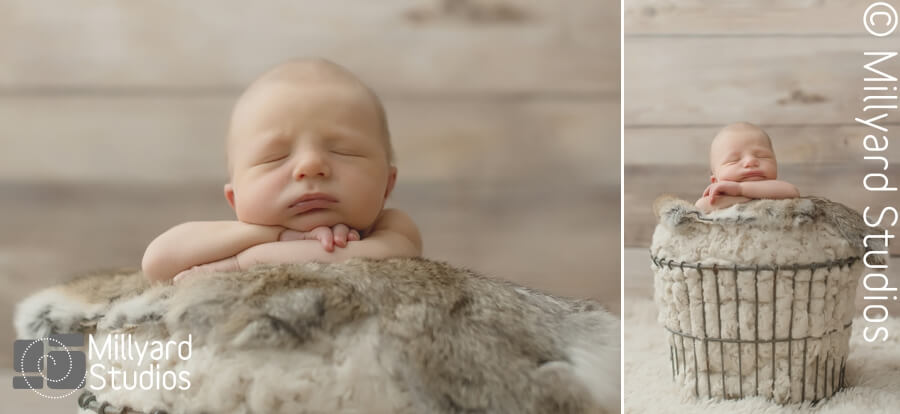 Newborn photographer nh