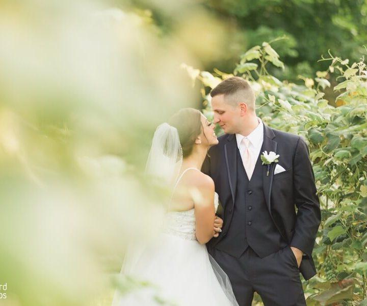 NH Wedding Photographer | Millyard Studios | Joelle & Dunstin | Birch Wood Vinyards