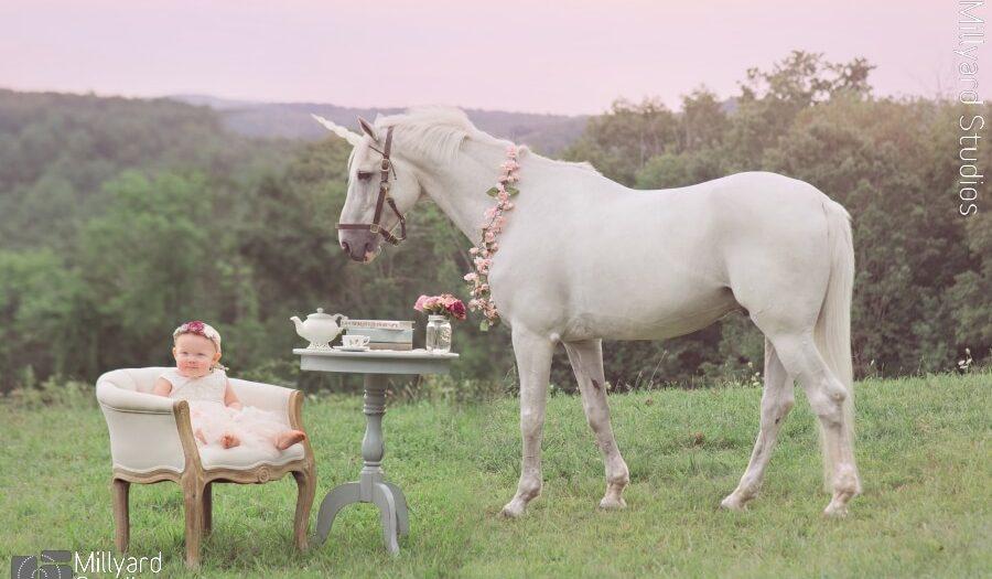 Baby Photographer NH- Unicorn Session