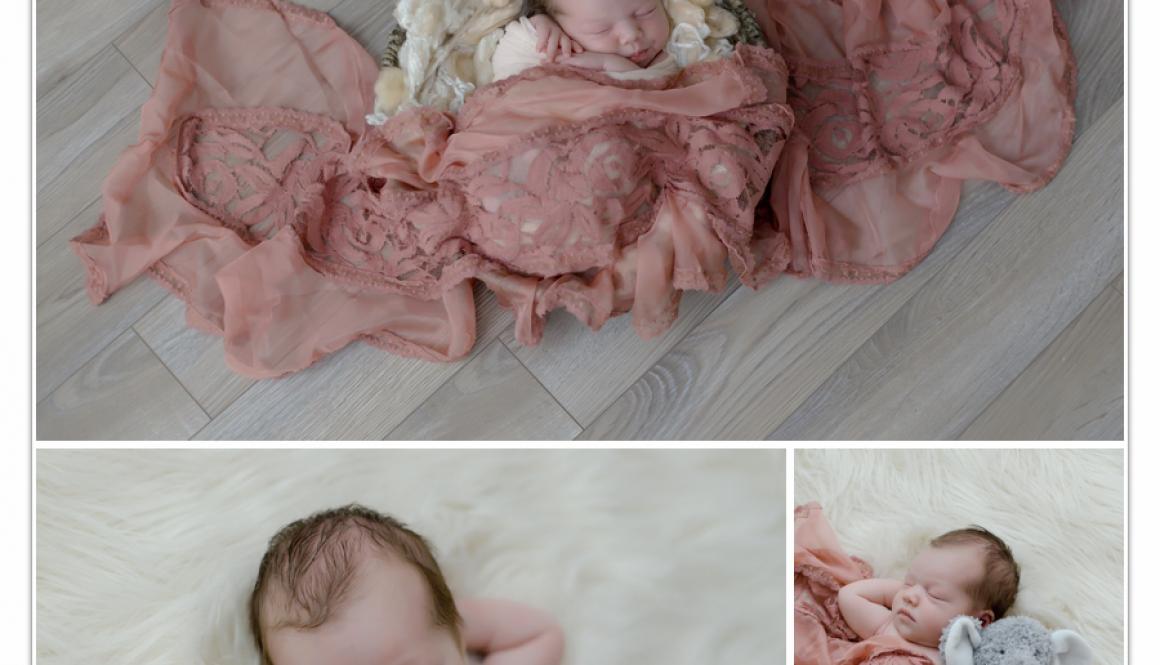Newborn Photographer NH 5