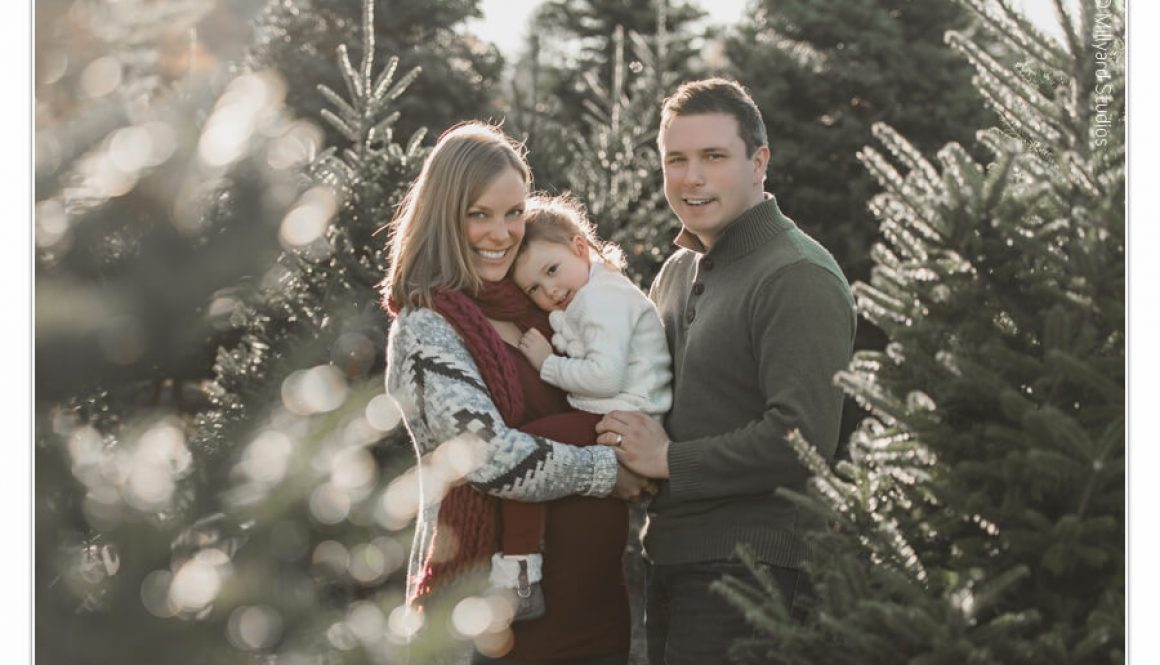 nh-photographer-millyard-studios-tree-farm-session-7