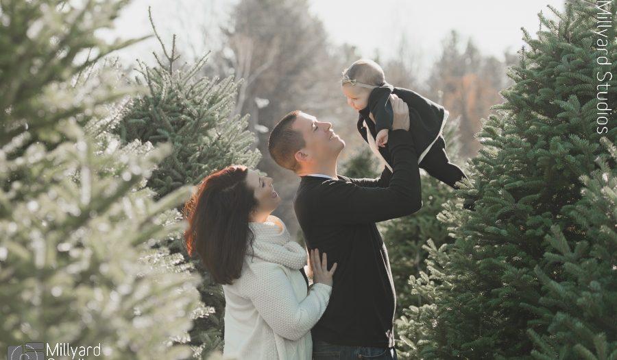 Christmas Tree Farm Photographer NH