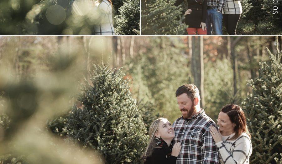 Christmas Tree Farm Photographer New Hampshire