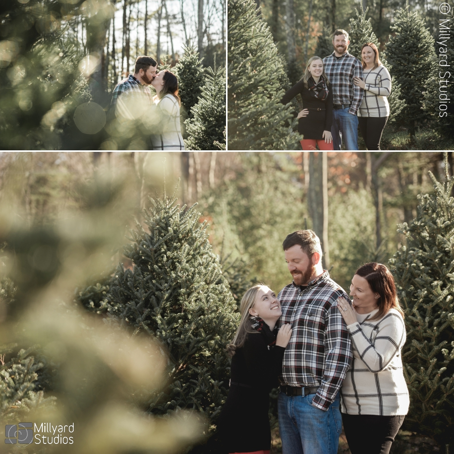 Christmas Tree Farm Photography.Christmas Tree Farm Photographer New Hampshire Millyard