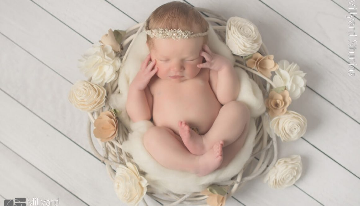 Newborn Photographer NH 6