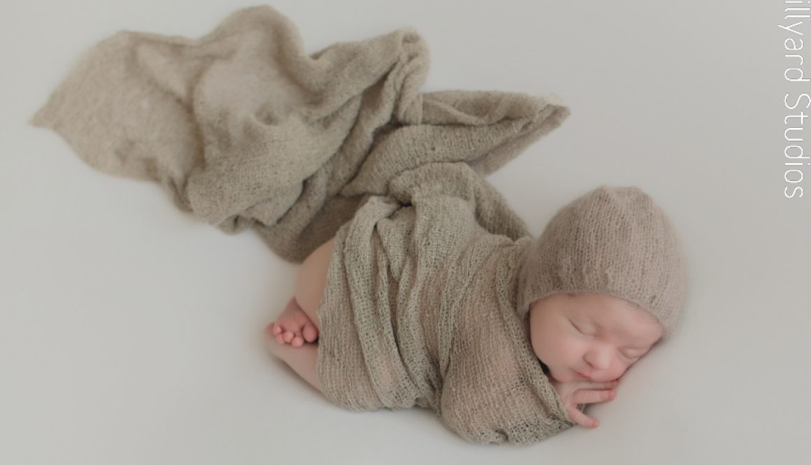 NH Newborn Photographer 1