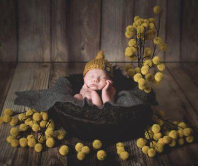 Millyard Studios New Hampshire Newborn Photographer 7
